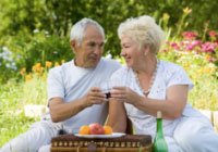 Older couple at picnic